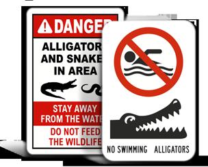Alligator Warning Signs