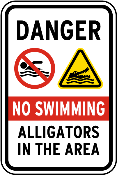 no swimming alligators in the area sign f8202 by safetysign com