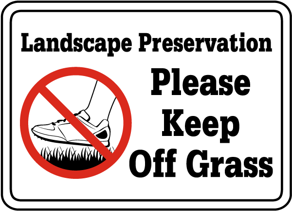 how to keep spiders off grass