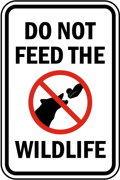Do Not Feed The Wildlife Sign