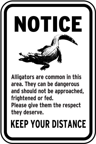 Alligators Are Common In This Area Sign