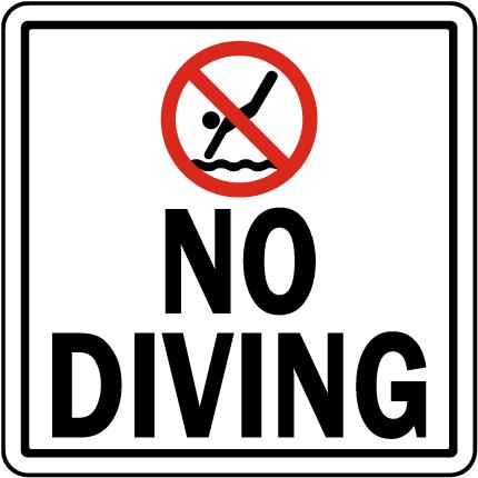 Texas No Diving Sign