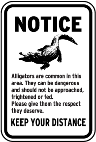 Alligators are Common in This Area Sign