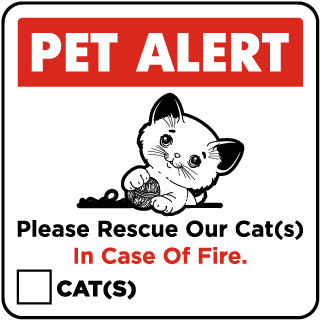 Please Rescue Our Cat Sticker