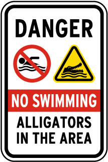 No Swimming Alligators In The Area Sign
