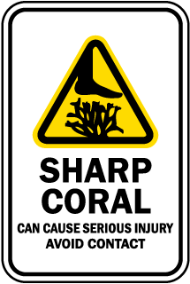 Sharp Coral Can Cause Serious Injury Avoid Contact sign