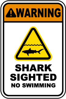 Warning Shark Sighted No Swimming sign